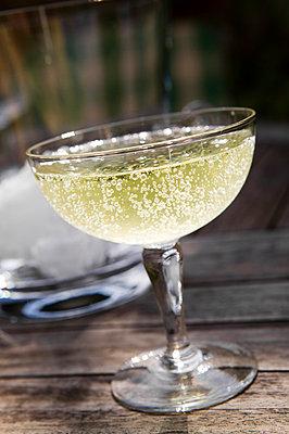 Champagner - p1057m1004993 by Stephen Shepherd