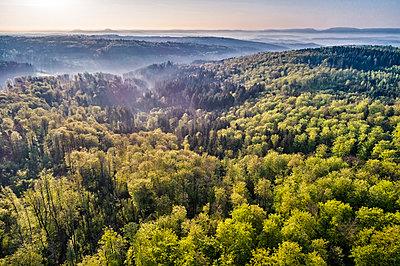 Germany, Baden-Wuerttemberg, Swabian Alb, Nassach Valley and Fils Valley, Aerial view of forest and fog - p300m1585442 von Stefan Schurr