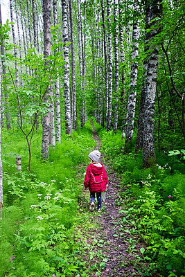 Finland, Kuopio, girl walking in a birch forest - p300m2070631 by Petra Silie