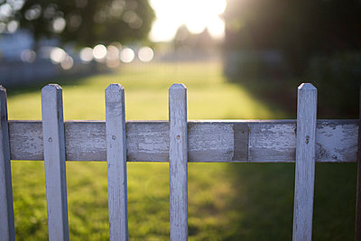 Weathered White Wood Fence - p694m720510 by Justin Hill photography
