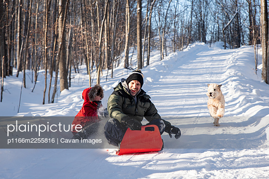 Father and son sledding down snowy hill with their dog on winter day. - p1166m2255816 by Cavan Images