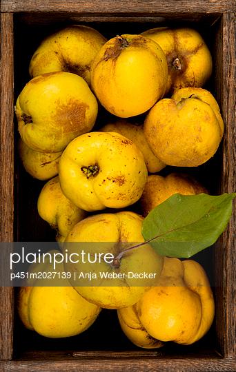Quitten - p451m2027139 von Anja Weber-Decker