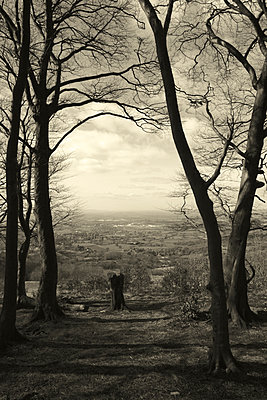 View from Cleeve Hill - p1121m943640 by Gail Symes