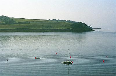 Cornwall - p1158m1054816 von Patricia Niven