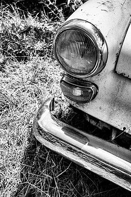 Mercedes - p305m880709 von Dirk Morla