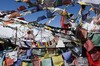 Buddhistische Gebetsfahnen - p817m1586768 von Daniel K Schweitzer