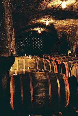 Wine cellar - p9792958 by Lemmler