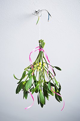 Mistletoes - p1149m1502281 by Yvonne Röder