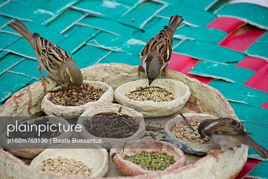 Gewürzmarkt in Indien - p162m763136 von Beate Bussenius