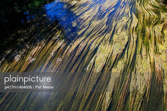 Donau - p417m1464606 von Pat Meise