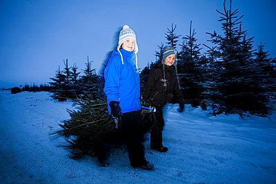 Portrait of little friends dragging Christmas tree on snowy landscape - p426m766579f by Katja Kircher