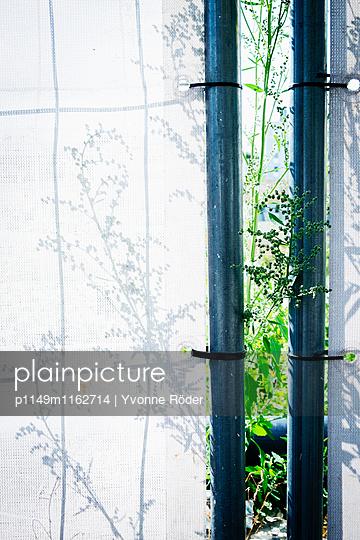 Bauzaun mit Pflanzenschatten - p1149m1162714 von Yvonne Röder
