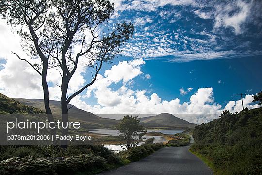 p378m2012006 von Paddy Boyle