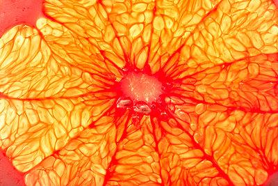 Orange Fruit Pulp - p1026m872413f by Romulic-Stojcic