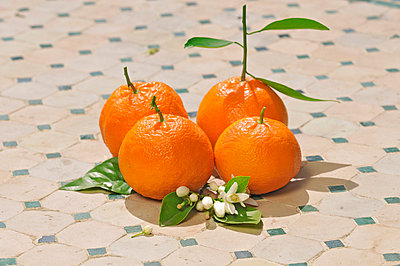 Orange with blossoms - p8850120 by Oliver Brenneisen