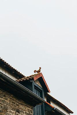 Wetterhahn auf dem Dach einer alten Scheune - p946m951103 von Maren Becker