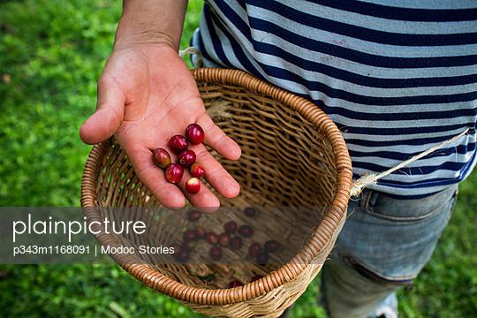 p343m1168091 von Modoc Stories