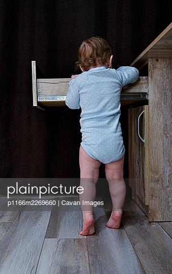 baby girl searching something in drawer - p1166m2269660 by Cavan Images