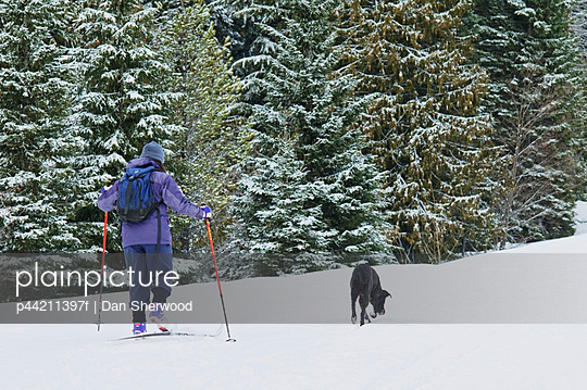 Person Cross-Country Skiing With A Dog