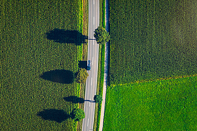 Germany, Chiemgau, country road and field in summer - p300m2080983 by Michael Malorny