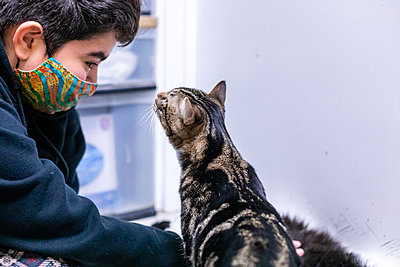 Cat Meets a Child Wearing a Mask for Pandemic Shelter Adoptions - p1166m2236311 by Cavan Images