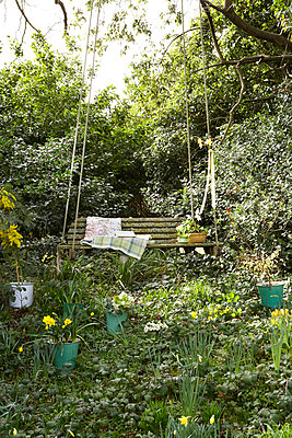 Sunlit swing seat and daffodils;  Isle of Wight;  UK - p349m920090 by Rachel Whiting