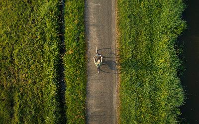 Boy cycling close to Mark river, Galder, Noord-Brabant, Netherlands - p429m2004585 by Mischa Keijser