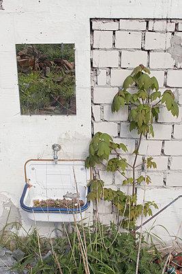 Haus im Spiegel - p1650377 von Andrea Schoenrock