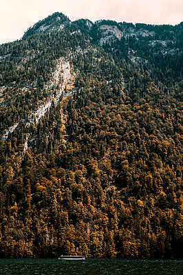 Pleasure boat on Lake Königssee, forest in autumn colours - p947m2209393 by Cristopher Civitillo