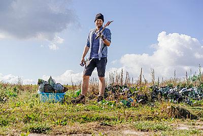Farmer erntet Rotkohl  - p586m1208828 von Kniel Synnatzschke