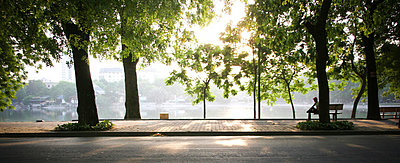 A lone man sits on a lakeside bench as the sun shines through the trees, Thien Quang lake, Hanoi, Vietnam, Southeast Asia - p934m832681 by Siamak Djamei photography