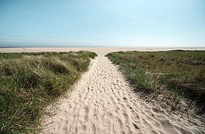 Überweg zum Strand auf der Nordseeinsel Amrum - p1162m1502388 von Ralf Wilken