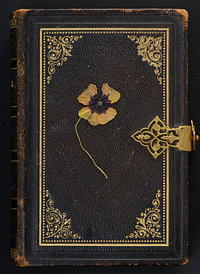 Old bible with shamrock - p4510781 by Anja Weber-Decker