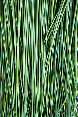 Chives - p31223794f by Ellinor Hall
