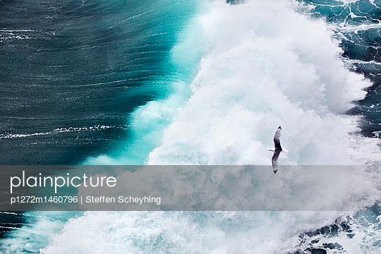 Küste Irland - p1272m1460796 von Steffen Scheyhing