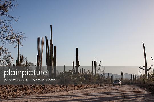 p378m2035815 von Marcus Bastel