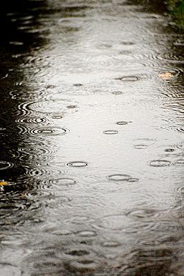 Rain falls - p6010587 by Alain Caste