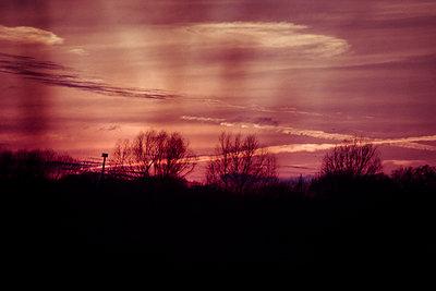 Sonnenuntergang mit Schilf - p1199m1538847 von Claudia Jestremski