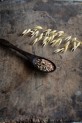 Oats and ladle of raw quinoa - p300m2220809 by Eva Gruendemann