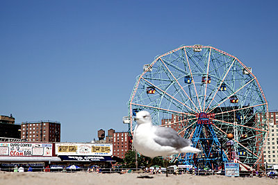 Coney Island - p530m918606 by marcuskaspar