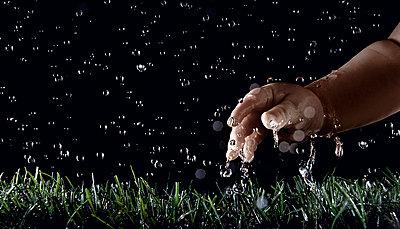 Children's hand touching grass - p8510140 by Lohfink
