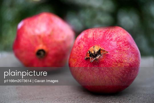 p1166m2073614 von Cavan Images