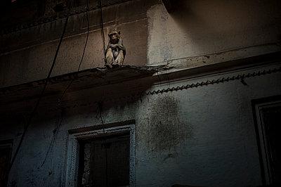 Varanasi - p1007m1060016 by Tilby Vattard