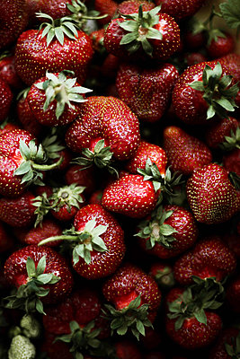 Red fresh organic strawberries. - p1166m2093964 by Cavan Images