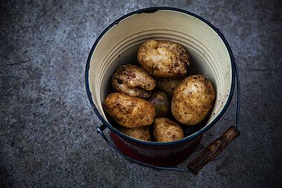 Kartoffelernte - p1338m1181719 von Birgit Kaulfuss