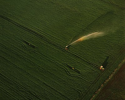 Irrigation by motorised sprinkler, Tasmania, Australia. - p1403m1482653 by Education Images