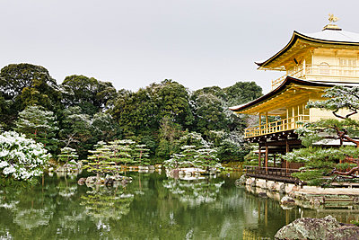 Golden Pavilion - p798m894279 by Florian Loebermann