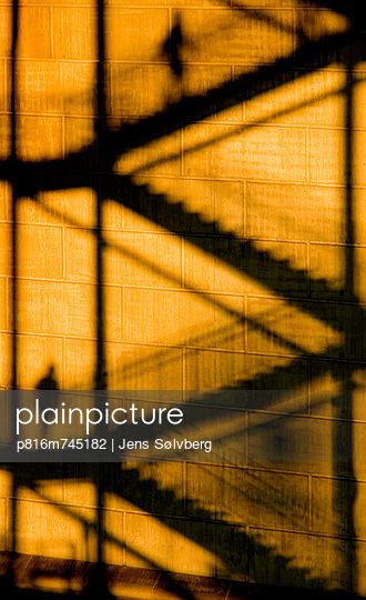 p816m745182 von Jens Sølvberg