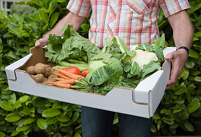 Man holding box of fresh vegetables - p42911276f by Ashley Jouhar