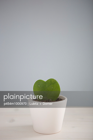 With love - p454m1000970 by Lubitz + Dorner